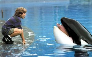 Jesse, played by Jason James Ritcher, and Willy in Free Willy