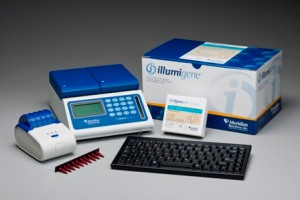Illumi gene LAMP method for C. difficile testing